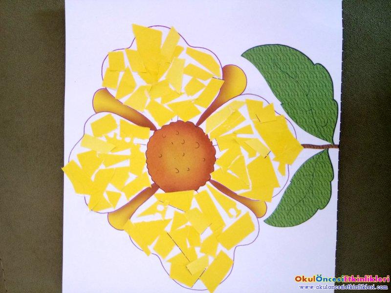 Papatya çiçeği Kes Yapıştır Okul öncesi Etkinlikleri